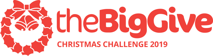 Big Give 2019 logo