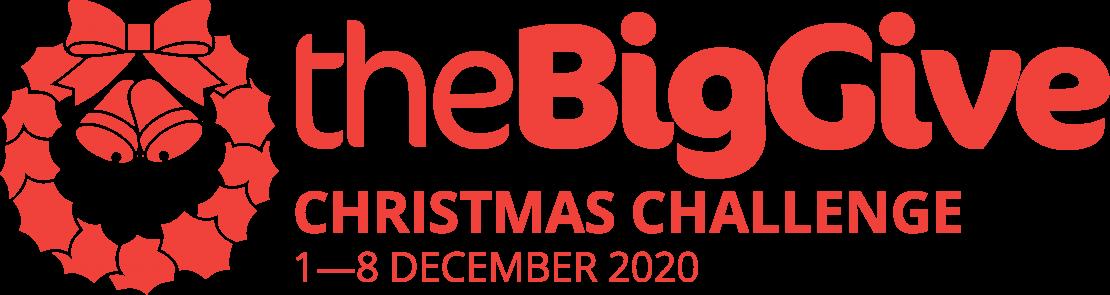 Big Give 2020 logo
